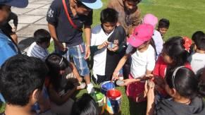 Universidad Anáhuac México Sur - Curso de verano